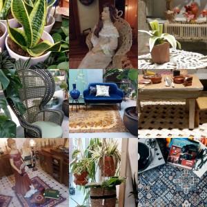 blog week 15